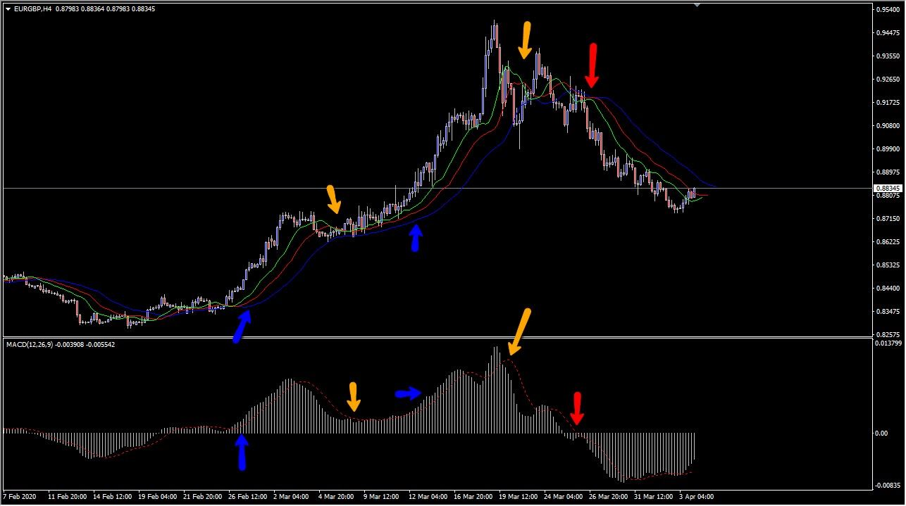 Alligator Indicator with the MACD